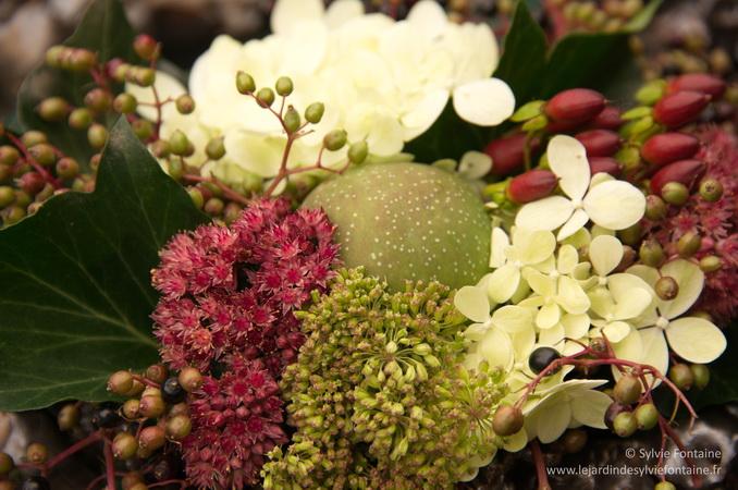 Les ingrédients du bouquet : hydrangea, sedum, fruit de chaenomeles, angelica en graines, baies de millepertuis, baies de sambuccus