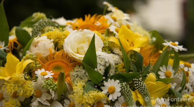 Préparez vos bouquets d'été!