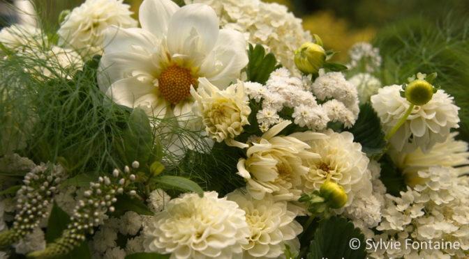 Bouquet du soir