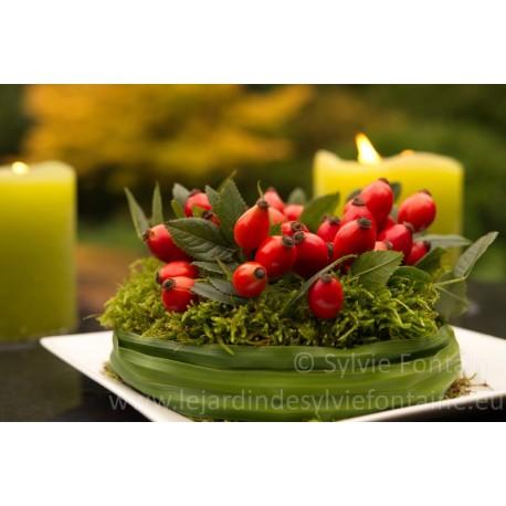 Photo-gateau de cynorrhodons-création florale-format A4