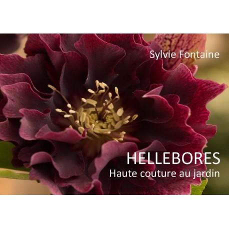 HELLEBORES Haute couture au jardin- - Sylvie Fontaine en téléchargement