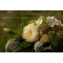 PHOTO BOUQUET BLANC ET VERT N°1 A4