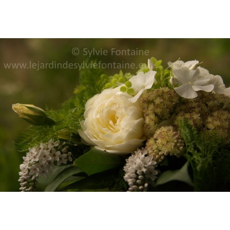 PHOTO BOUQUET BLANC ET VERT N°1