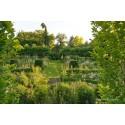 Le Jardin de Sylvie Fontaine